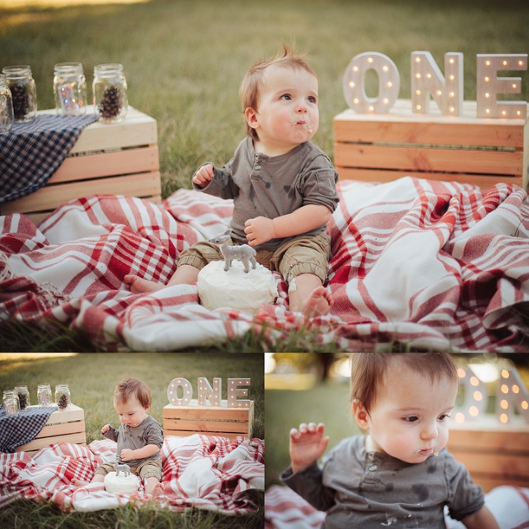 Rustic Woodland First Birthday Pictures